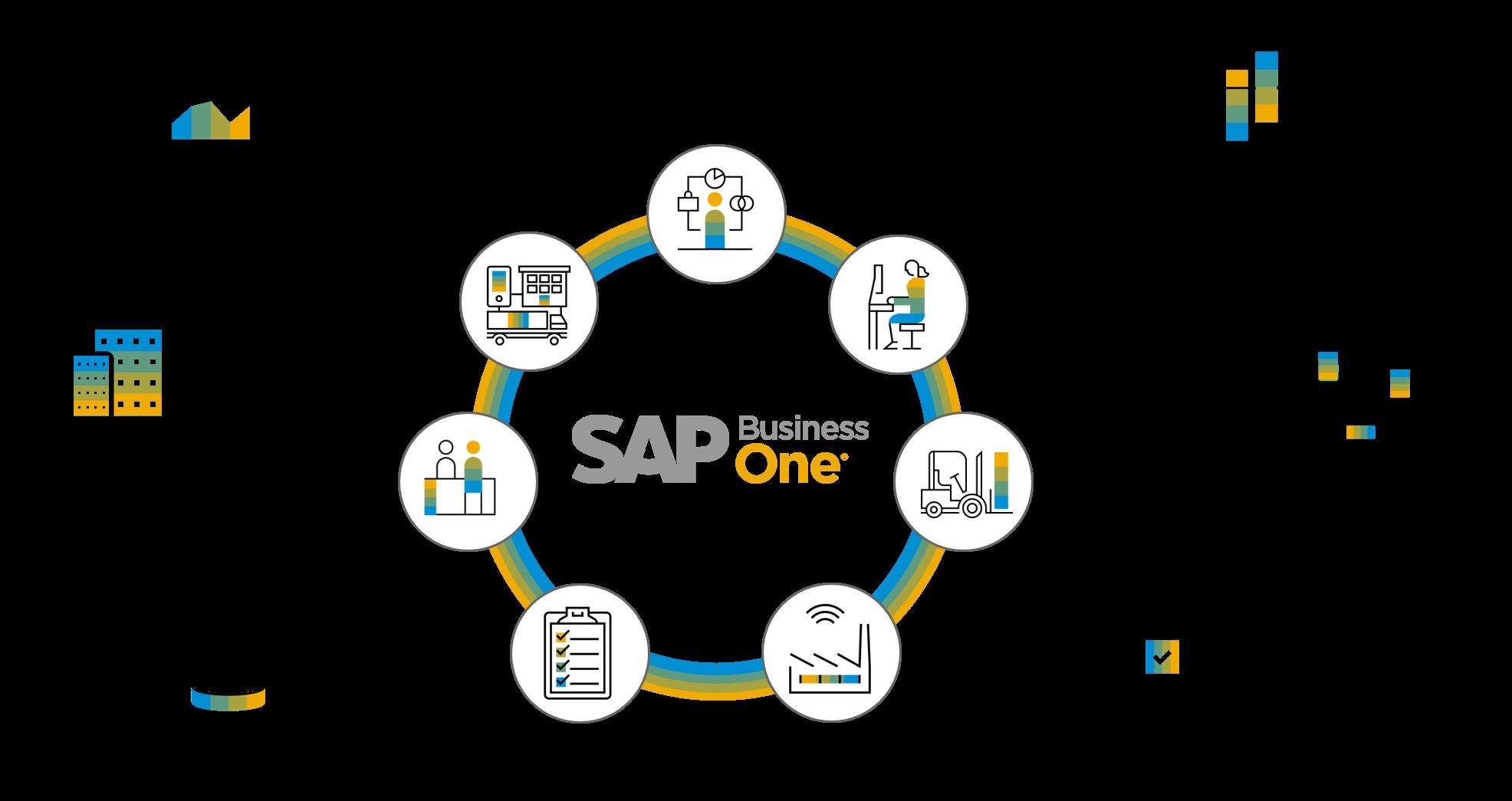 SAP-graphic